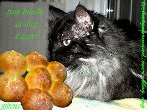 pain brioche au sirop d'agave (Medium)