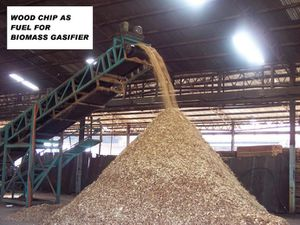 wood-chip-out-of-conveyor-WITH-COMMENT.JPG