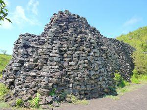 3eme j Isla Isabela - Tortue - Muro de las lagrimas (37)