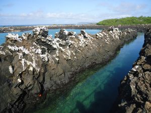 3eme j Isla Isabela - ile volcanique -Tintorenas (16)