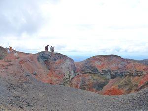 4eme j Isla Isabela - Volcan (28)
