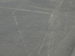 Nazca avion (37)