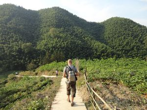 mukeng-foret-bambou (06)