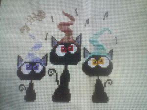 sal-quatuor-de-chats--3.jpg