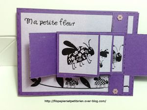 Scrapbooking Cartes 0799vB