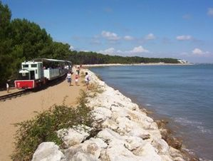 Petit-train-Oleron.jpg