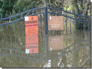 Sur-la-Vilaine-26-Fev.2014--a-vendre.jpg
