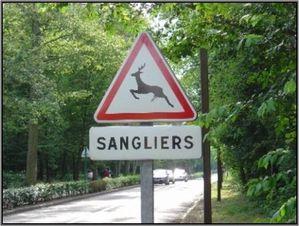 sanglers