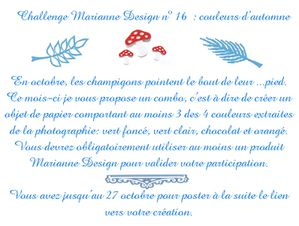 annonce challenge 16