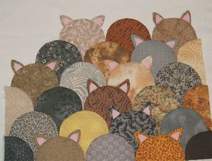 chats-ronds-02.jpg