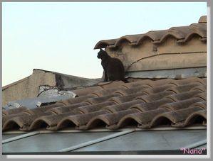 NANA sur les toits episode 3'''