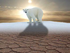 rechauffement-climatique.jpg