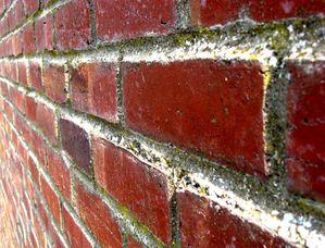 mur-brique-fugue.jpg