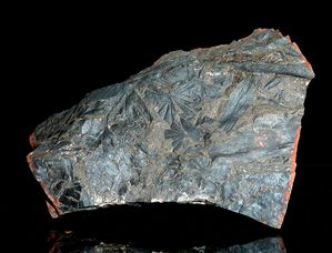 Carbonifère / Stephanien .