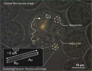 nanomoteur2014.jpg
