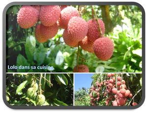 letchis-litchis