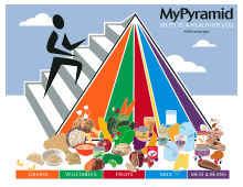 220px-MyPyramidFood_svg.png