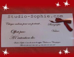 Chèque cadeau Studio Sophie, marché de Noël deVésigneul
