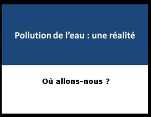 pollution marie