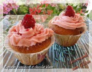 cupcakes_framboise_chocolat_blanc_sans_gluten-1-.jpg