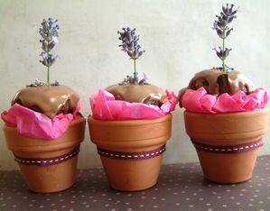 cupcakes chocolat lavande en petits pots de fleurs. Black Bedroom Furniture Sets. Home Design Ideas