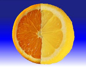 Orange-Citron-s.jpg