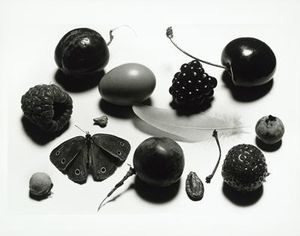 food_irvingpenn6.jpg