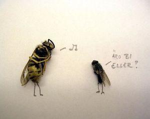 humor-with-dead-flies09-Humor-with-dead-flies.jpeg