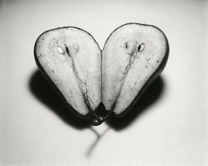 food_irvingpenn5.jpg