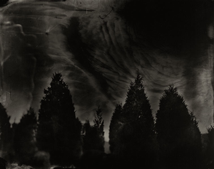 sally-mann-1941.png
