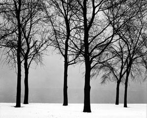 HarryCallahan ChicagoLakeFront1949