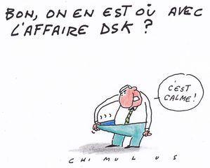 DSK 2011