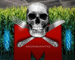 OGM-MONSANTO-CANCER-1.jpg