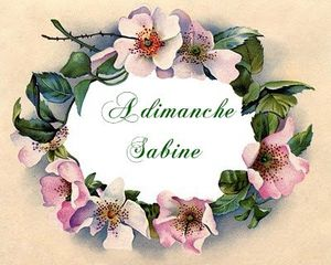 wildrose-vintage-graphicsfairy007fr-1-.jpg