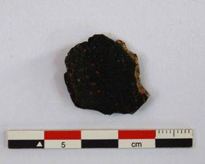 fragment de noix de coco