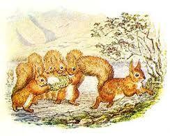 Gli scoiattoli, al mattino