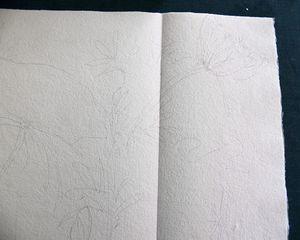 sketch2 lg