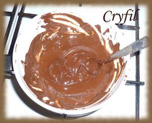 raisin-au-chocolat-3.JPG
