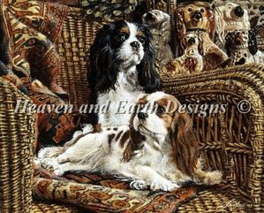 cavaliers on wicker HAED