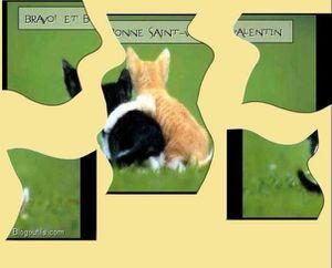 generateur-puzzle.jpg