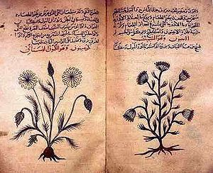 300px-Arabic_herbal_medicine_guidebook.jpg