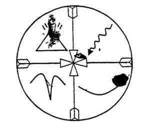 logo-wani.JPG