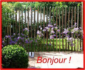 Floralies de Nantes 2014 371