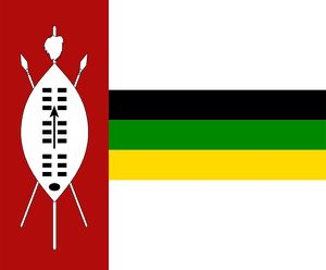 bunny KwaZulu flag