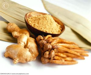 Ginger Root and Krachai CB064434