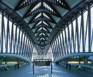 S Calatrava - Gare TGV Lyon St Exupéry948