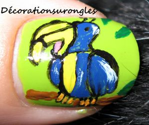 concours nail art perroquet