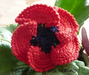 http://img.over-blog.com/300x252/3/80/06/85/Tutos/Fleur-pavot-crochet-1.JPG