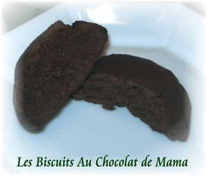 Biscuits choco 2