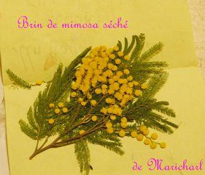001maricharl.jpg